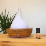 Diffuseur d'huiles essentielles brumisateur Elegensia