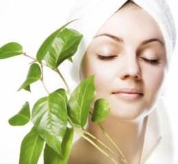 Natural Daily Skin Care