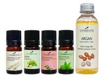 Pack anti-moustique huiles essentielles