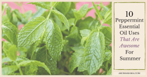 10 Peppermint Essential Oil Uses That Are Awesome For Summer
