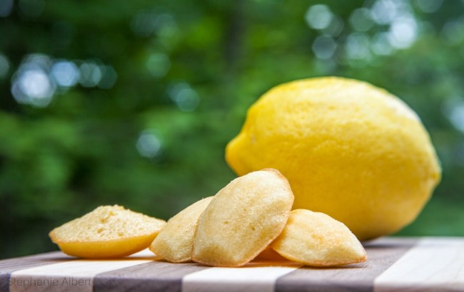 Lemon madeleine.