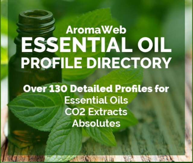 Essential Oil Profiles And Guide