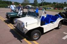 British Leyland and BMC Show (40)