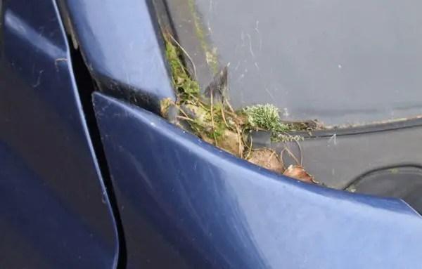 craigs car stuff 033 (1024x768)