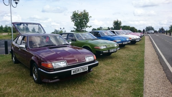 Rover SD1s on show