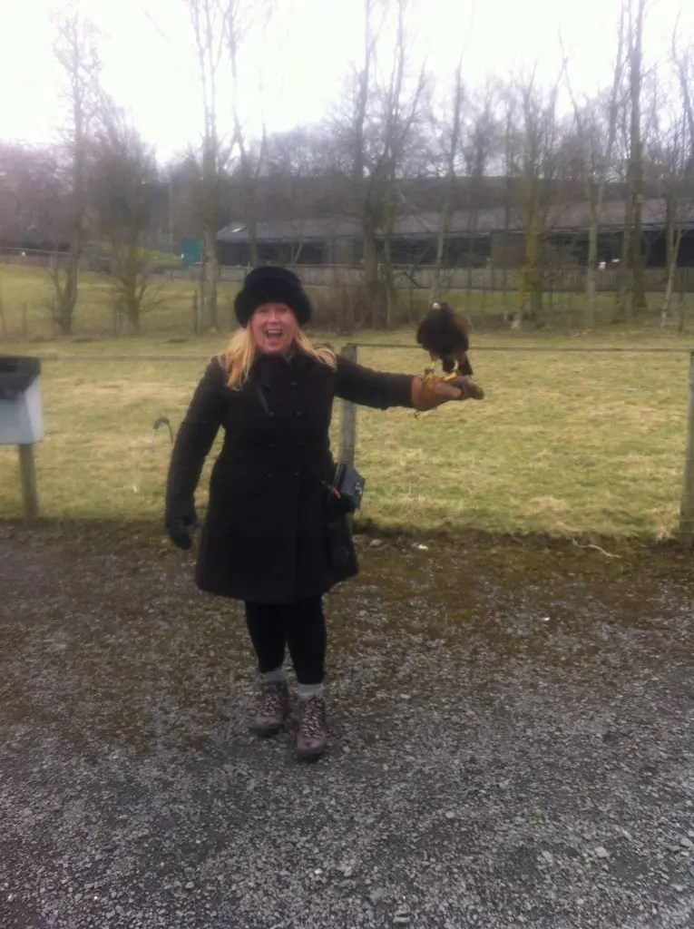 Christmas Gift Experiences - falconry centre