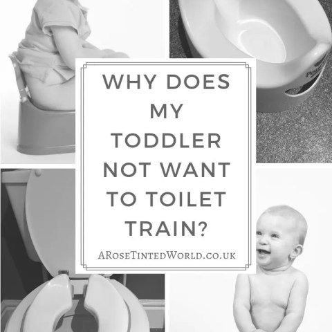 Why Does My Toddler Not Want To Toilet Train?