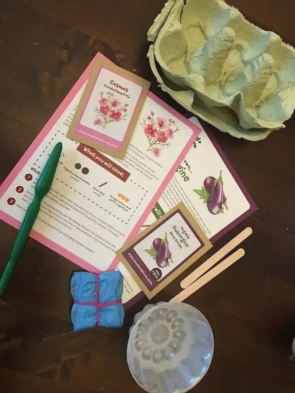 Mud + Bloom Subscription Box Review - planting activity