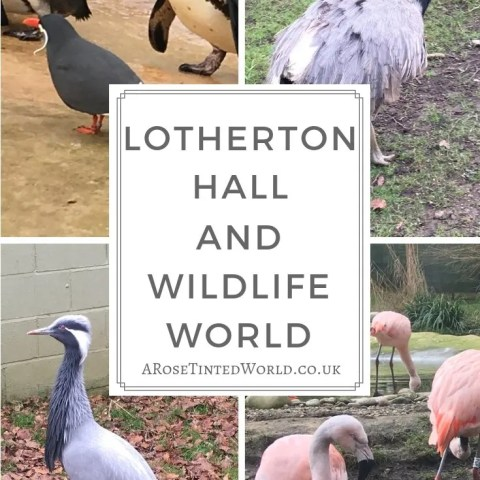 Lotherton Hall and Wildlife World – Days Out in Yorkshire
