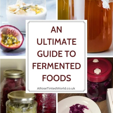 Ultimate Guide To Fermented Foods