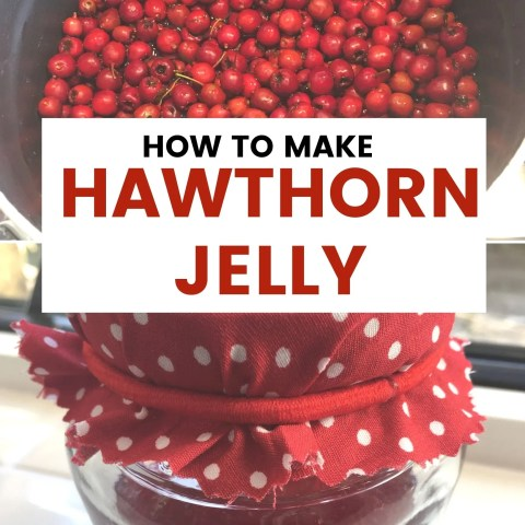 How To Make Hawthorn Jelly