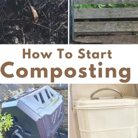 How To Start Composting – What You Need To Know