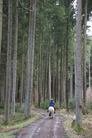 Wanderung Aying