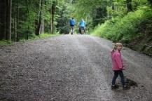 Forstweg zur Kirchsteinhütte