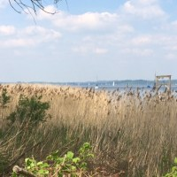 Dampferfahrt auf dem Ammersee und Seespaziergang
