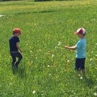 Kinder beim Blumen pflücken Wanderausflug Kinder