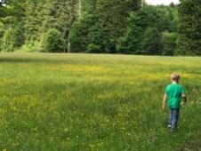 Kinderwagen-Wanderung an den Osterseen