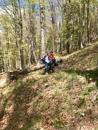 Wanderung auf die Grünsteinhütte