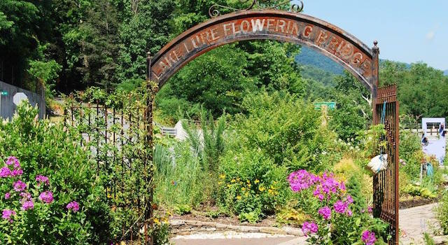 The A To Z Discovery Guide For Exploring Lake Lure Nc