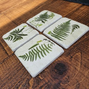 Coasters - Ferns, garden coasters, Around the garden table, garden gifts, garden accessories, garden centre delivery, plants Kent, plants Northiam, plants maidstone, flowers Kent, flowers delivered Kent, plants, flowers, bedding plants, seasonal bedding, seasonal bedding plants, edible plants, wildlife habitats, compost and mulches Kent, garden furniture, garden furniture Kent, gardening East Sussex, locally delivered garden supplies, contactless delivery, garden supplies with contactless delivery, vegetable seeds, vegetable plants, affordable garden furniture, wholesale garden supplies, bespoke planters, gift planters, garden inspiration, heart and soul gardening, #thechickenknows, Pop-Up Garden Boutique, free local delivery plants, free local delivery garden gifts, free local delivery garden accessories
