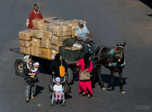 Pferd beisst Frau auf dem Jemaa El Fnaa (Unesco)