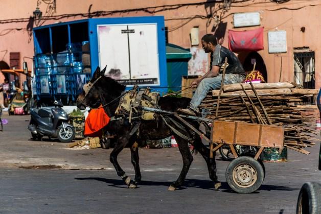 Händler auf Jemaa El Fnaa (Unesco)