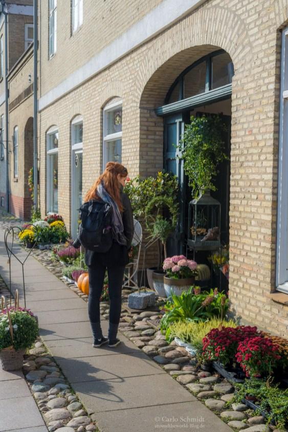 Franzi hat einen Blumenladen entdeckt in Christansfeld (Unesco)