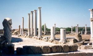 Salamis Gymnasium. Courtesy Wikipedia.