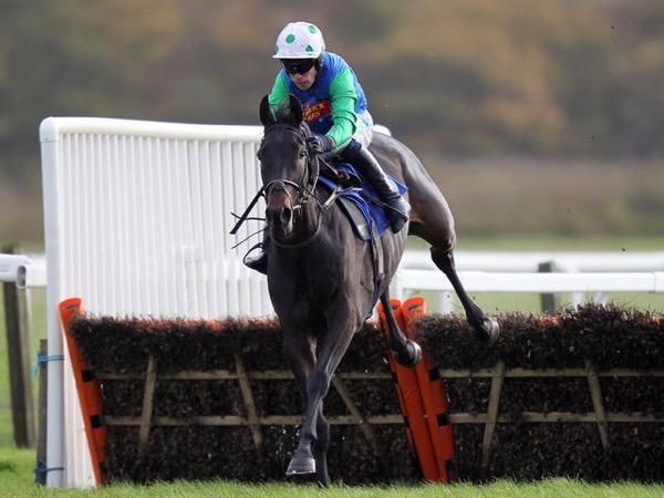 Horse_Doctor_Harper-big