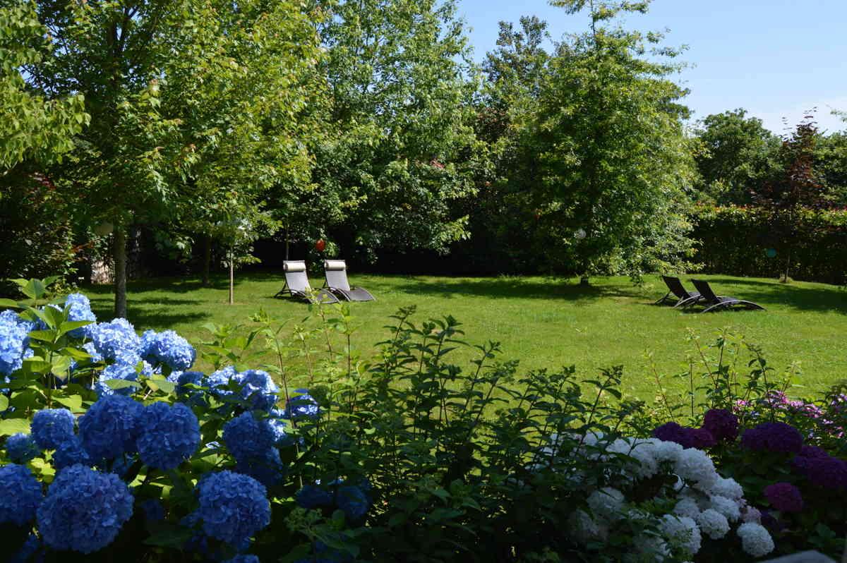 Zona del jardín para descanso de nuestros clientes con tumbonas rodeada de naturaleza
