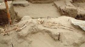 Nuevos hallazgos arqueológicos en el norte del Perú : Restos del  pequeño templo de la cultura Mochica encontrados en complejo  arqueológico de Ventarrón (Pomalca, Lambayeque)