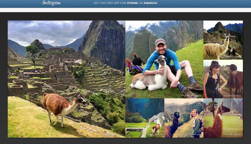 """Famosa red social de imágenes Instagram destacó las """"llamas fotogénicas"""" que habitan en Machu Picchu"""