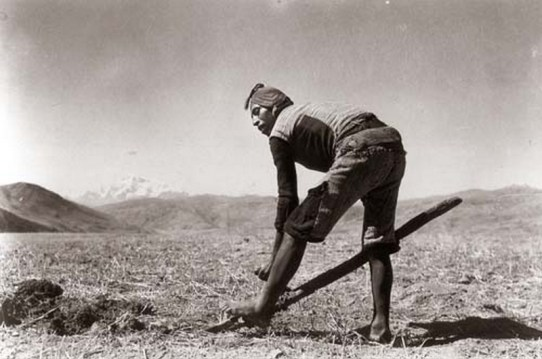 Martin-Chambi-Campesino-con-Arado-de-Pie