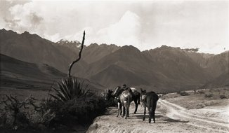 machu-picchu-1991-hallazgo-035