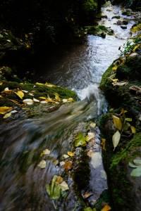 agua cayendo a poza hojas doradas desde arriba chorreras valdepeñas de jaen