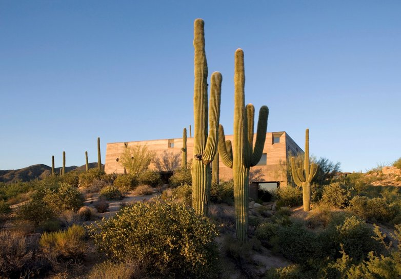 Desert Courtyard House - Wendell Burnette Architects