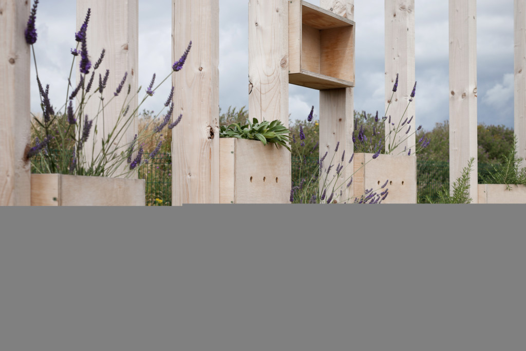 Hedge School Stage 2 06 by AP+E