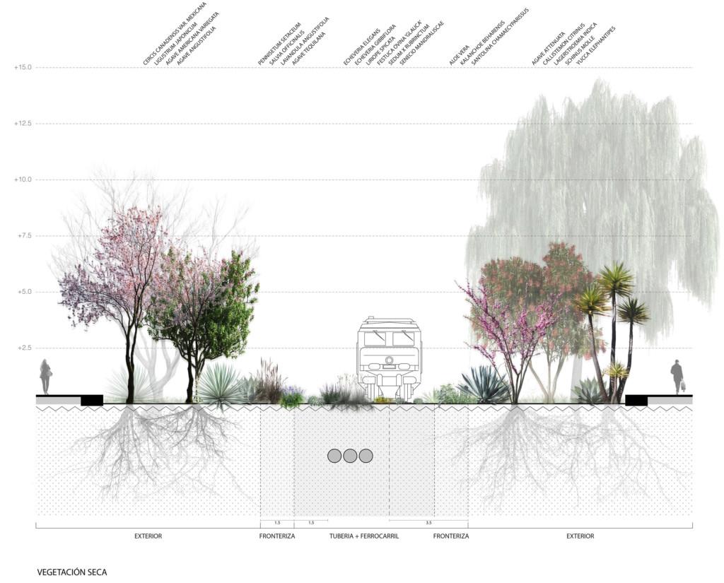 vegetation section dry 30112016