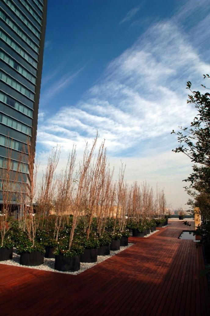 Roof Garden, Sheraton - Pascal Arquitectos