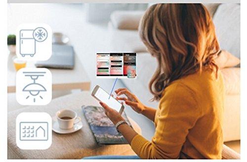 BTicino G723SC Serie BTDIN Salvavita Connesso WiFi con Riamo Manuale Via APP Grigio