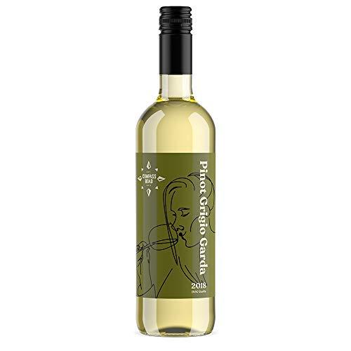 Marchio Amazon  Compass Road Pinot Grigio DOC Garda  6 bottiglie da 75 cl