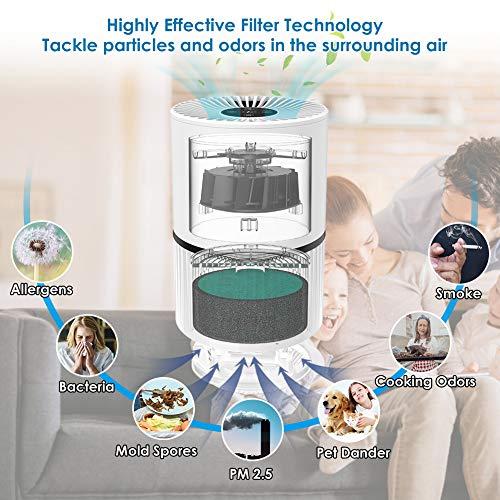 Purificatore dAria 4in1Purifiers Vero HEPA Filtri di Carbonio AttiviIonizzatore 3 Velocit 3 Temporizzazione Smart Filter Change Promemoria Cattura fumo Polvere Polline Peli di Animali