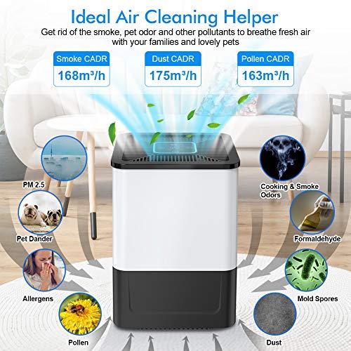Purificatore daria Casa con Filtro HEPA di Allergeni fumo polvere polline peli di animali domestici odori batteri muffeSistema di filtrazione a 5 strati e 3 ModiFunzione di temporizzazione