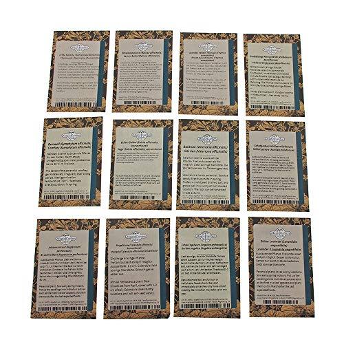 Piante medicinali dellEuropa centrale  set regalo di semi con 12 erbe tradizionali