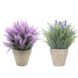 SHACOS Set di 2 Lavender Pianta Artificiale in Vaso Fiore Finti Piante Finte Vasi Piante Fiori Artificiali per Home Office2 Pezzi Lavender