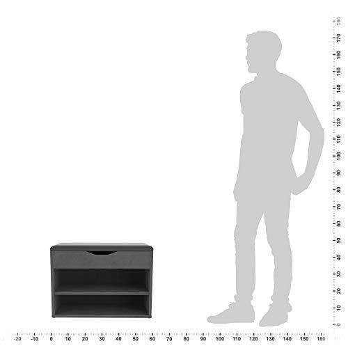 RICOO WM032BGA Scarpiera da Ingresso 60x42x30cm Panca portascarpe Armadio salvaspazio Armadietto scaffale con Sedile Guardaroba Legno Grigio
