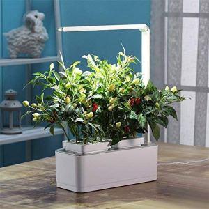 VASO SMART Smart Garden  serra idroponica per piante vaso intelligente grow box  Orto da interno 100 Bio  Coltiva le erbe aromatiche lampada smart luce Led inclusa  dimensioni 285 x 265 x 37 cm
