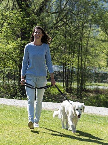 Happilax Guinzaglio per cani regolabile con 3 misure o guinzaglio doppio 2 m