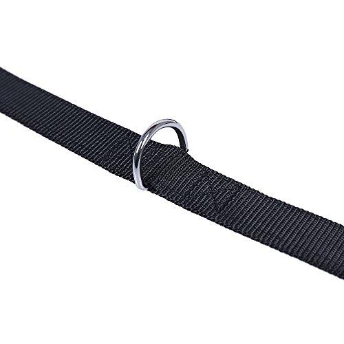 QQDOG Guinzaglio educativo del Cane del Nylon del guinzaglio del Nylon Regolabile Solido di addestramento 3m Nero