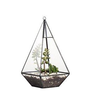 Moderno terrario da tavola a forma di piramide in vetro geometrico faidate da appendere espositore trasparente per pianta grassa vaso decorativo aperto altezza 24cm